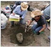 Dinosaur Excavation